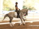 GDFNA Global Dressage Forum North America<br> Jan Brink<br> Assisting<br> Christina Vinios<br> Riding<br> 10 yrs. old Gelding<br> Duration:39 minutes