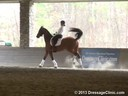 GDCTA Annual Symposium with<br> Scott Hassler<br> Assisting<br> Kim Gentry<br> Leonardo<br> Danish Warmblood<br> by: Landtinus<br> Owner: Kim Gentry<br> Duration: 43 minutes Training: FEI 5 yrs. Olds Duration: 43 minutes