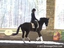 GDCTA Annual Symposium with<br> Scott Hassler<br> Assisting<br> Ashley Marascalco<br> Rebellienne HVH<br> Hanoverian Mare<br> by: Rotspon-EM Whitney/Welser<br> Duration: 28 minutes