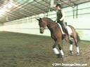 U.S.Trainers & Judges Young Horse Forum<br>Part 3<br> Michael Poulin &<br> Christoph Hess<br> Discusion & Practical<br> Demonstration on Suppleness,<br> Contact, Movement Based<br> On Conformation<br> Duration: 36 minutes