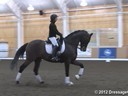 NEDA Fall Symposium<br>Day 2<br> Ashley Holzer<br> Stephen Clarke<br> Assisting<br> Martyna Morris<br> Tycho<br> 12 yrs. Old KWPN  Gelding<br> Duration: 37 minutes