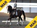 Day 3<br> Markus Gribbe<br> Assisting<br> Rochelle Kilberg<br> Rudy<br> Hanoverian Rotsporn<br> 9 yrs. old Gelding<br> Training: 1-2/GP Level<br> Owner: Rochelle Kilberg<br> Duration: 36 minutes