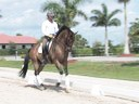 Jan Brons<br>