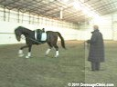 U.S. Trainers & Judges Young Horse ForumA Lunging & Training Lecture by Michael Poulin Duration: 19 minutes