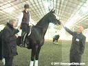 U.S.Trainers & Judges Young Horse Forum<br>Part 1<br> Discussion & Practical<br> Demonstration of Gaits<br> by Micheal Poulin &<br>  Christoph Hess<br> Subjects:<br> Basic Paces<br> Ability of Movement<br> Rhythm & Tempo<br> Train