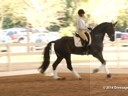 GDFNA Global Dressage Forum North America<br> Tinne Vilhelmsson<br> Riding & Lecturing<br> Benetton Dream FRH<br> 10 yrs. old Stallion<br> Duration: 21 minutes