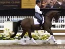 GDFNA Global Dressage Forum North America<br> Wolfram Wittig<br> Training Presentation<br>Assisting<br>Shannon Dueck<br>Riding Kantares<br>Hanoverian<br>9 yrs. old Gelding<br>Duration: 27 minutes