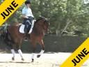 Charlotte Bredahl<br> Assisting<br> Lisa Teske<br> Remedy<br> Hanoverian<br> 7 yrs. Old Gelding<br> Training: 3rd Level<br> Owner: Lisa Teske<br> Duration: 39 minutes