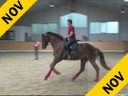 Markus Gribbe<br> Assisting<br> Aaron Guy<br> Keanu<br> Trakehner<br> by: Luecke<br> 4 yrs. old Gelding<br> Training: Training Level<br> Duration: 18 minutes