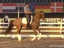 GDFNA Global Dressage Forum North America<br>Steffen Peters<br>Assisting<br>Marcus Orlov<br>Riding<br>E.T. Voila<br>Hanoverian<br>8 yrs. Old Gelding<br>Duration: 42 minutes