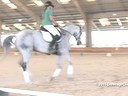 CDS Junior Young Rider Clinic<br> Charlotte Bredahl<br> Assisting<br> Johanna Paine<br> Balliz<br> 12 yrs old Gelding<br> Thoroughbred<br> Training: 3rd level<br> Duration: 32 minutes