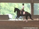 The Georgia Dressage & Combined Training Association<br>Day 2<br> Guenter Seidel<br> Assisting<br> Ashley Marascalo<br> Don Frederic<br> Hanoverian<br> 4 yrs. old Gelding<br> Training: FEI 4 yrs. old<br> Duration: 31 minutes