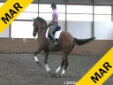 Day 1<br> Markus Gribbe<br> Assisting<br> Andrea Taylor<br> Usher<br> KWPN<br> by: Jazz<br> 9 yrs. old Gelding<br> Training: PSG/1-1<br> Owner: Penny Pillow<br> Duration: 36 minutes
