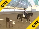 IDCTA Illinios Dressage & Combined Training Association<br> Lilo Fore<br> Assisting<br> Kerry Johnson<br> Red Fish Blue Fish<br> Training: 4th Level<br> Duration: 40 minutes