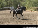 U.S. Trainers & Judges Young Horse Forum<br>Day 2<br> Dr. Dieter Schule<br> Demonstrating the Expectations<br> of the Developing horse<br> Assisting<br> Barbi Breen<br> Vindicator<br> KWPN<br> by: OO Seven<br> 9 yrs. old Gelding<br> Duration