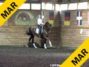 Day 1 Markus Gribbe Assisting Carmie Flaherty Prince Solo Hanoverian by: Pik Solo 12 yrs. old Gelding Training:  I1 Level Owner: Linda Landers Duration: 27 minutes