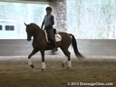 GDCTA Annual Symposium with<br> Scott Hassler<br> Assisting<br> Laura Wharton-Mero<br> Fiddle Dee Dee<br> 5 yrs. Old Mare<br> Owner: Patricia Borders<br> Training: FEI 5 yr. olds<br> Duration: 34 minutes