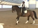 IDCTA Illinios Dressage & Combined Training Association<br> Lilo Fore<br> Assisting<br> Paula Briney<br> Willemna<br> Training: PSG<br> Duration: 46 minutes