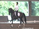 The Georgia Dressage & Combined Training Association<br>Day 2<br> Guenter Seidel<br> Assisting<br> Gigi Nutter<br> Vincere<br>by: Ferro<br> KWPN<br> 10 yrs. old Gelding<br> Training: 4th Level/PSG<br> Duration: 41 minutes