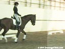 U.S.Trainers & Judges Young Horse Forum<br>Discussion & Demonstration<br> on Suppleness & Contact<br> by Micheal Poulin &<br>  Christoph Hess<br> Subjects:<br> Horse's Shapes<br> Confirmation<br> Movement<br> Duration: 29 minu