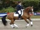 Volker Brommann<br>Riding & Lecturing<br>Wellington Florida<br>Optimist<br>KWPN<br>8 yrs. old Gelding<br>Training: 4th Level<br>Duration: 36 minutes