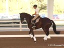 GDFNA Global Dressage Forum North America<br> Christilot Boylen<br> Riding & Lecturing<br> Florencia<br> 7 yrs. old Mare<br> Duration: 36 minutes