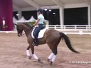 GDFNA Global Dressage Forum North America<br> Christoph Hess<br> Assisting<br> Laura Loyes<br> Galveston<br> Danish<br> Duration: 20 minutes